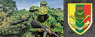 land_force_side_banner.jpg